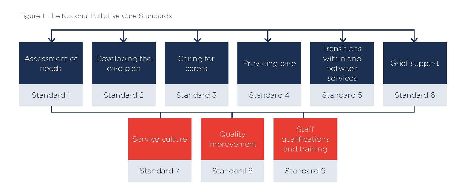 national palliative care standards - palliative care